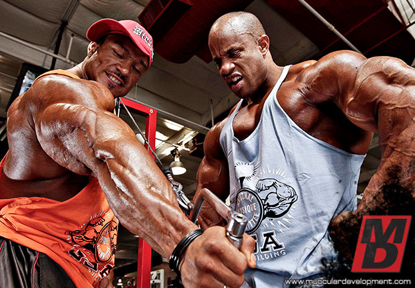 VICTOR-AND-ROELLY-DESTINATION-BIG-ARMS-INS3